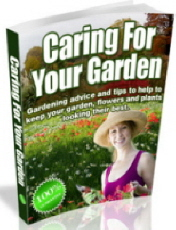 Looking after your Garden